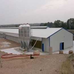 Prefab Chicken House/Steel Structure Poultry House pictures & photos