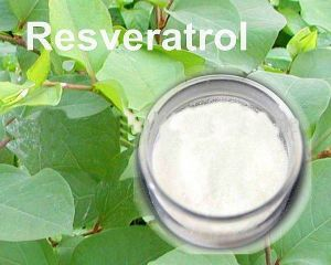 Pure Natural 98%Trans Resveratrol Powder pictures & photos