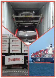 Car Consolidate Container From Shanghai to Worldwide pictures & photos