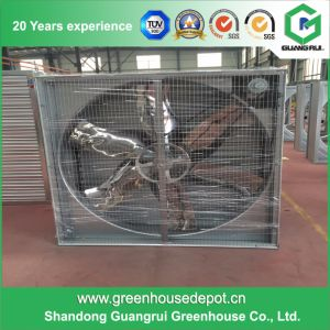 Low Price Poultry House/Greenhouse Ventilation Exhaust Fan pictures & photos