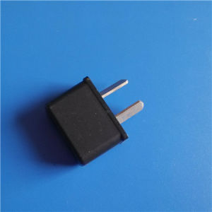 Two Pins ABS High Quality Plug (RJ-0131) pictures & photos