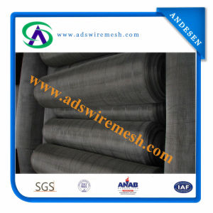 Square Wire Mesh (electro / hot dipped galvanzied) pictures & photos