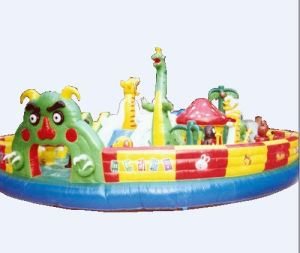 Outdoor Big Amusing Inflatable Amusement for Kid (FC-016)