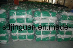 Scaffolding Net for South Asia Market