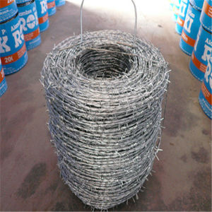 Low Carbon Material Barbed Wire (Plastic/PVC) pictures & photos