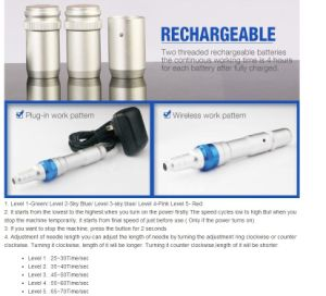 Newest Rechargeable Micro Pen for Skin Needling Treatment A6 pictures & photos