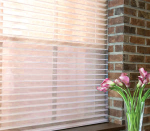 Shangri-La Blinds Systems for Windows (CB-12) pictures & photos
