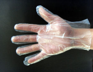 Disposable PE / HDPE Gloves / Disposable PE Gloves pictures & photos