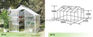 Hobby Greenhouse for Plants and Flowers (B712) pictures & photos