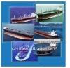 International Ocean and Air Shipment Shipping Service