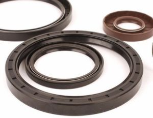 High Quality Moulded Viton O Ring, Viton Gasket, Viton Oil Seal pictures & photos