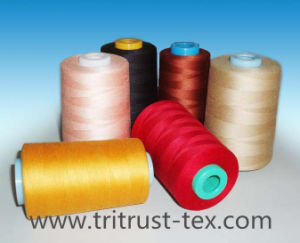 (2/40s) Spun Polyester Sewing Thread pictures & photos