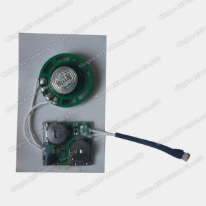 Sound Chip for Newspaper, Light Sensor Module, Sound Chip (S-3009B) pictures & photos