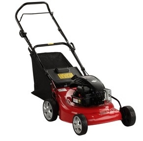 "Tw-Lm04 18"" 4.0HP B&S Lawn Mower pictures & photos"