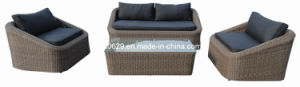 Wicker Sofa Set Livingroom Wicker Sofa (KY819)