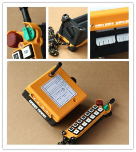 F21-14s China Manufacturer Crane Wireless Remote Control pictures & photos
