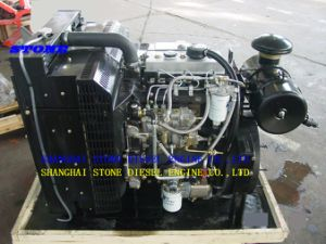 Engine for Water Pump (1003-3Z / 1003-3TZ) pictures & photos