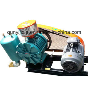Low Noise Rotary Air Blower pictures & photos