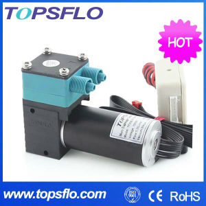 Mini 6V 12V 24V DC Diaphragm Vacuum Pump pictures & photos