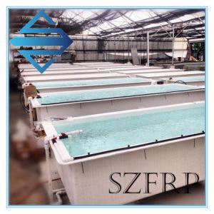 FRP Fiberglass Aquaculture Fish Farming Tank pictures & photos