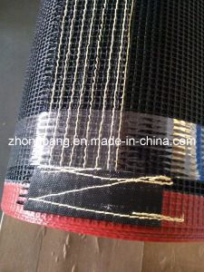 PTFE Teflon Conveyor Belt Black pictures & photos