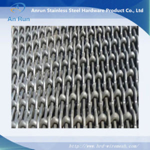 Pig Steel Crimped Wire Screen Mesh with Rectangular Hole pictures & photos