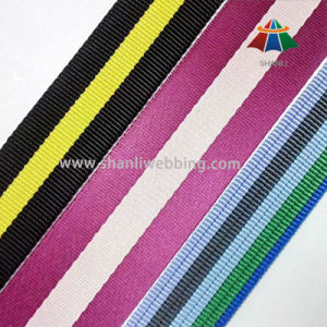100% Nylon Webbing for Luggage Strap and Bags pictures & photos