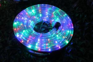 2017LED Garden Light Multicolor with Controller pictures & photos