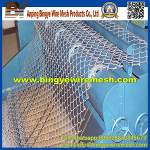 Cheap Chain Link Fence Prices for Decorative Garden pictures & photos