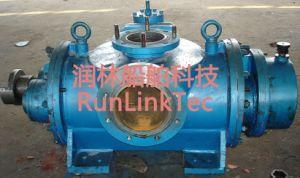 Screw Pump/Double Screw Pump/Twin Screw Pump/Fuel Oil Pump/2lb2-200-J/200m3/H pictures & photos