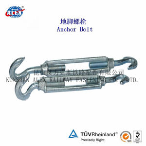 Customized T Head Bolt L Bolt with Plain Oiled pictures & photos