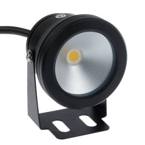 AC85-265V High Quality 10W RGB LED Flood Light Garden LED Underwater Light Outdoor pictures & photos