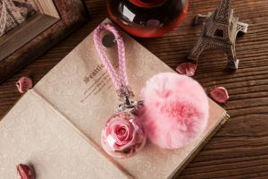 Ivenran Preserved Fresh Flower Pink Ball Keychain for Gift and Decoration pictures & photos