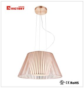 Modern Simple Commercial Insulation Pendant Light Lamp pictures & photos