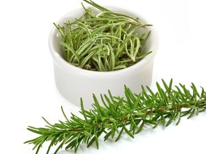 Rosemary Extract for Natural Food Antioxidant pictures & photos
