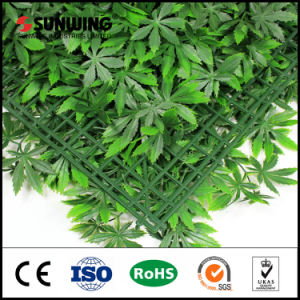 New Style UV Protected Landscaping Evergreen Artificial Plants pictures & photos