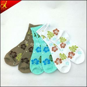 Becatiful Summer Cotton Girls Socks pictures & photos