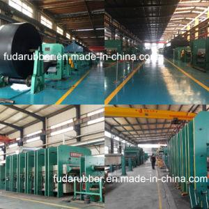 Molded Edge, Cut Edge Flat Transmission Rubber Conveyor Belt pictures & photos