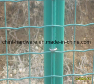 Netherlands Netting in Good Quality Wire Mesh pictures & photos