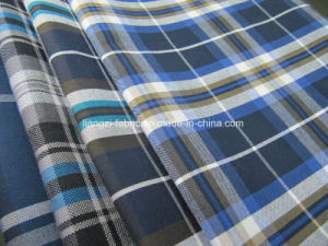 Cotton Yarn Dyed Oxford Check for Shirt Fabric pictures & photos