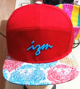 3D Embroidery Street Dance Cap Snapback Cap City Fashion Cap pictures & photos
