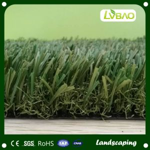 Landscaping Artificial Grass Lawn for Garden Decoration Turf pictures & photos