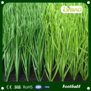 50mm Artificial Grass for Sport/Football/Soccer Field pictures & photos