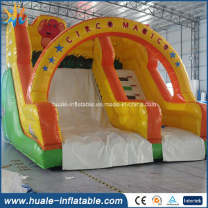 Hot Sale Inflatable Water Slide /Outdoor Slide for Amusement Park pictures & photos