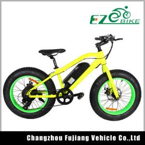 20 Inch Pocket Fat Tire Dubai E Bike Bicycle pictures & photos