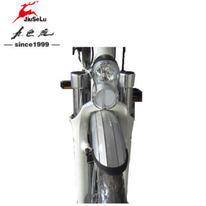 """CE Approved 26"""" Aluminum Alloy Frame City Electric Bikes (JSL038Z-2) pictures & photos"""