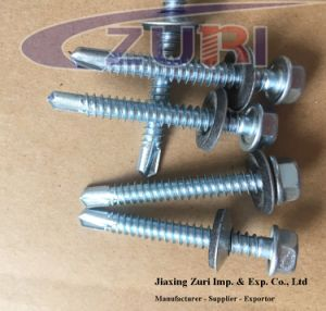 "Self Drilling Roofing Screw with EPDM Washer #12*2"" pictures & photos"