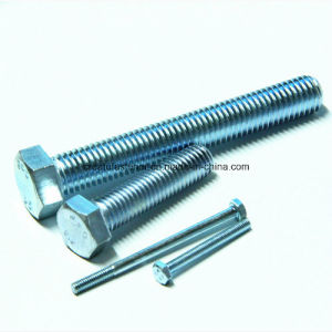 Hex Bolts for DIN933 DIN931 DIN960 DIN961 ISO4014 ISO4017 DIN558 DIN601 pictures & photos