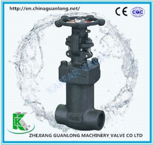Forged Bellow Sealed Globe Valve (BGL41) pictures & photos