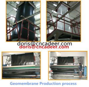 PE Waterproof Geomembrane pictures & photos